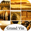 Vins de France : le guide du vin – Grand Vin – Pratikeo