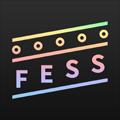 FESS 〜集まれば、そこがフェスになる。〜